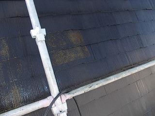 屋根洗浄前後.jpg
