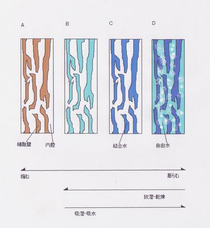 木質含水イメージ.jpg